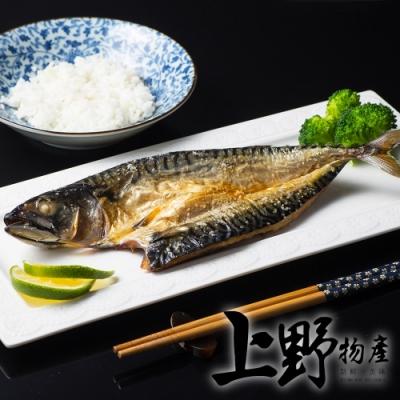 【上野物產】台灣宜蘭產地直送 薄鹽鯖魚(160g±10%/片) x10片