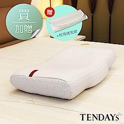 TENDAYS 雲端舒適枕(正側兩用枕)