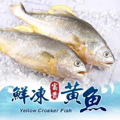 【愛上海鮮】鮮嫩富貴黃魚12包(220g±10%/包)
