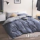 Jumendi喬曼帝 200織精梳純棉-被套6x7尺(仙人掌繪本)