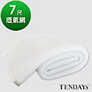 TENDAYS 立體蜂巢透氣網 特規雙人床墊用