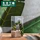 【生活工場】淨透微光燈工長方型花器 product thumbnail 1