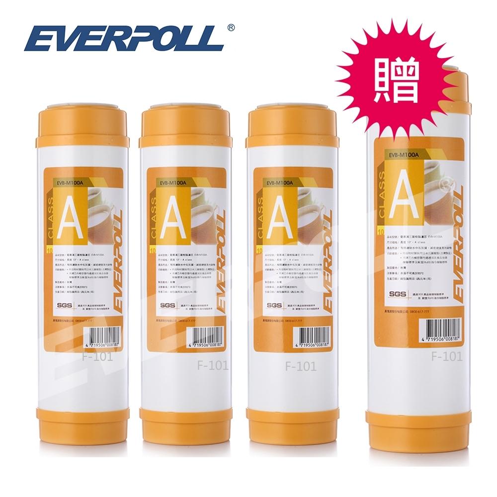 【EVERPOLL】 10吋樹脂濾芯M-100A (EVB- M100A) [買3+送1]