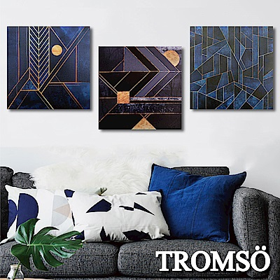 TROMSO 時尚無框畫-古龍藍調