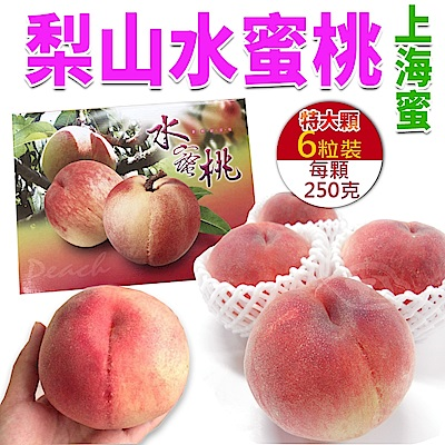 【天天果園】梨山特大顆上海蜜水蜜桃(250g) x6顆