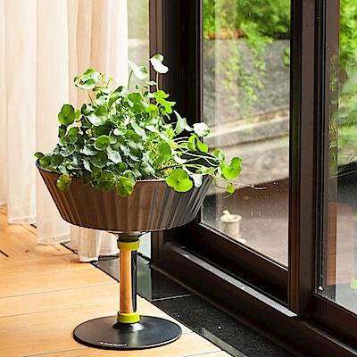 My Garden療癒植物容器 魚花共生 / 高腳杯-DY601