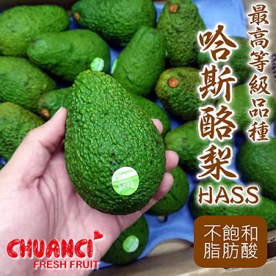 【川琪】頂級品種 哈斯酪梨10入裝