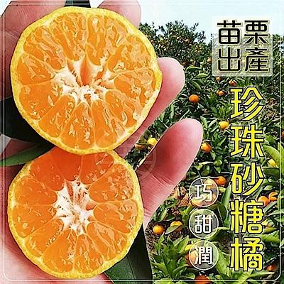 【天天果園】苗栗蜜珍珠砂糖橘禮盒 x3斤