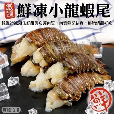 【海陸管家】進口優質龍蝦尾2隻(每隻約60g)