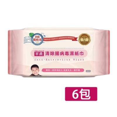 芊柔 清除腸病毒濕紙巾80抽x6包
