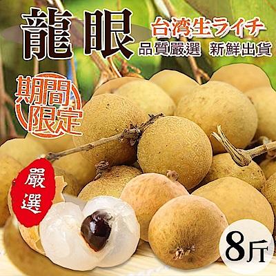 【天天果園】台南東山鄉嚴選帶枝大顆龍眼 x8台斤