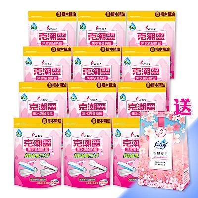 克潮靈 集水袋補充包-檜木精油(3入/組,12組/箱)~箱購