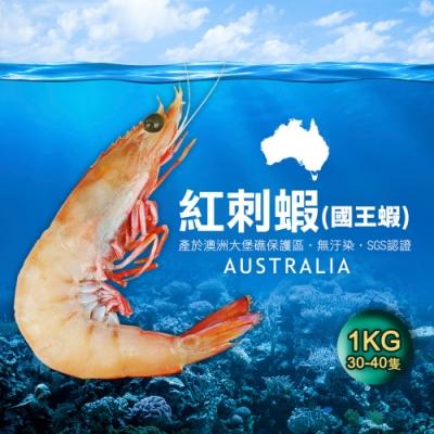 築地一番鮮-澳洲大堡礁野生國王蝦1包(1kg/包/30-40隻)