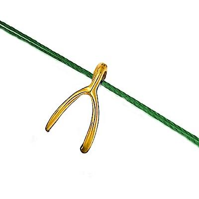 Dogeared 許願骨 Wishbone 許願超靈驗 金墜綠色繩項鍊
