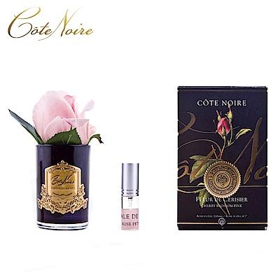 法國 CoteNoire 蔻特蘭 小朵粉紅玫瑰香氛花黑瓶