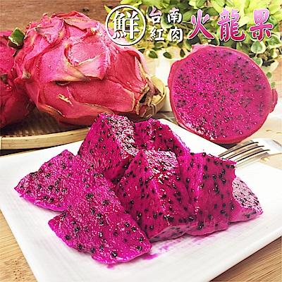 彩水果 台南鮮採紅肉火龍果X 1 盒( 5 斤± 10 %/盒)