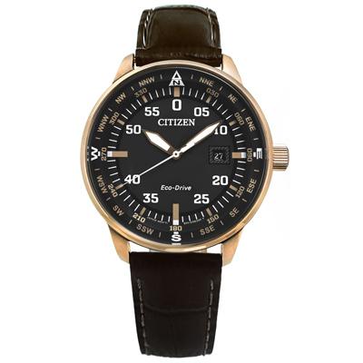 CITIZEN 方位日期真皮光動能手錶(BM7393-16H)灰x香檳金框x深褐/42mm