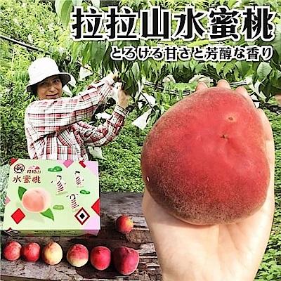 【天天果園】拉拉山五月水蜜桃(媽媽桃)12粒4盒(每盒約2.5斤)