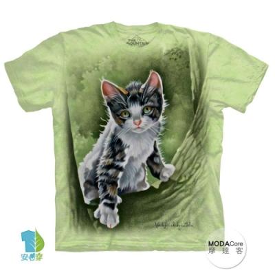 摩達客-美國The Mountain 樹中小貓 純棉環保短袖T恤