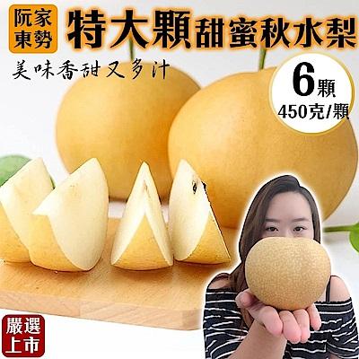 【天天果園】阮家東勢大顆秋水梨禮盒6顆(每顆約450g)