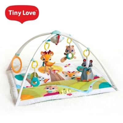 Tiny Love 美國 玩偶健力遊戲墊-Into the Forest