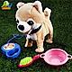 【Playful Toys 頑玩具】牽線狗 product thumbnail 1