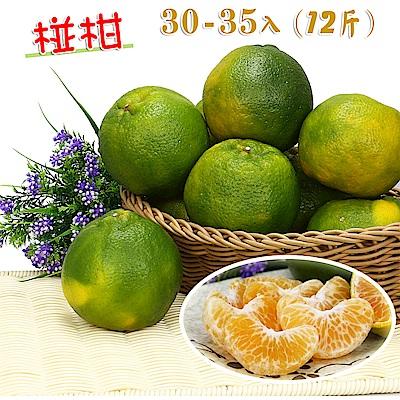 愛蜜果 鮮採牛奶椪柑30~35顆箱裝25A(約12斤/箱)