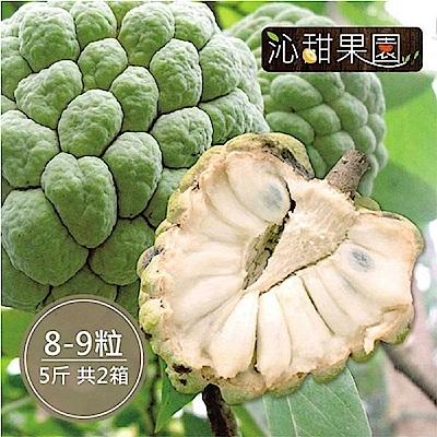 沁甜果園SSN 台東大目釋迦(8-9顆裝/5台斤)(共2箱)