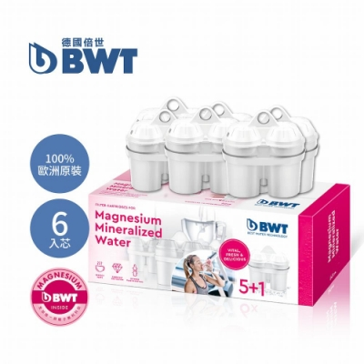 BWT德國倍世 鎂離子濾芯6入