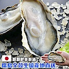 馬姐漁舖 全殼生蠔-1份(1kg/份)