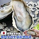 馬姐漁舖 全殼生蠔-2份(1kg/份)