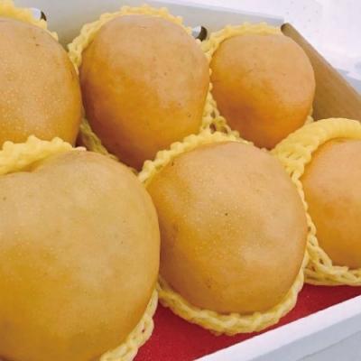 【天天果園】台灣特大顆高山梨禮盒6顆(每顆約600g)
