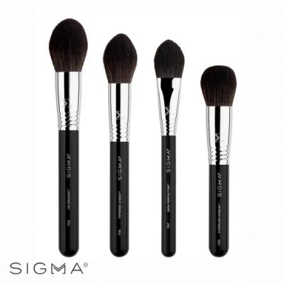 Sigma 超進化美顏專業刷具4件組 Studio Brush Set
