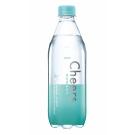 泰山Cheers 氣泡水(500mlx24入)