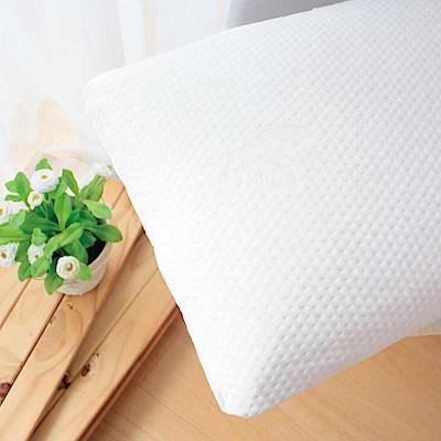 鴻宇 特級標準型天然乳膠枕2入