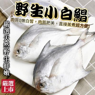 【海陸管家】嚴選野生天然鮮嫩小白鯧33隻組(3隻裝/270g/包)