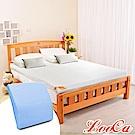(母親節特惠組)LooCa 特級天絲12cm釋壓記憶床墊-雙人5尺