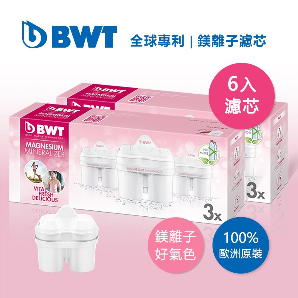 BWT德國倍世 Mg2+鎂離子8周長效濾芯-六入組