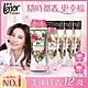 日本No.1 Lenor蘭諾衣物芳香豆(香香豆) - 甜花石榴香 1+3組 product thumbnail 2