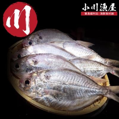 (滿額)小川漁屋 超厚實野生肉鯽魚1包(500g/包)