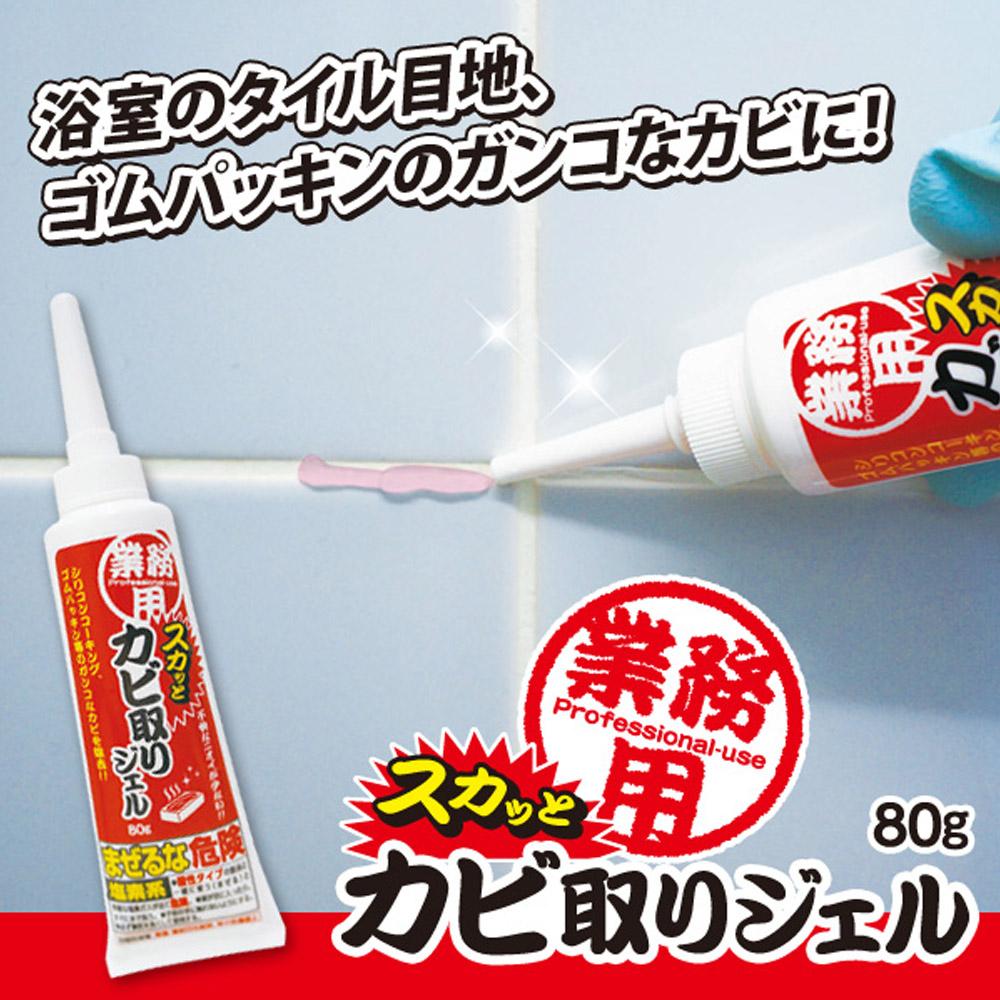 AIMEDIA艾美迪雅 浴室專用去黴凝膠 80g-日本製