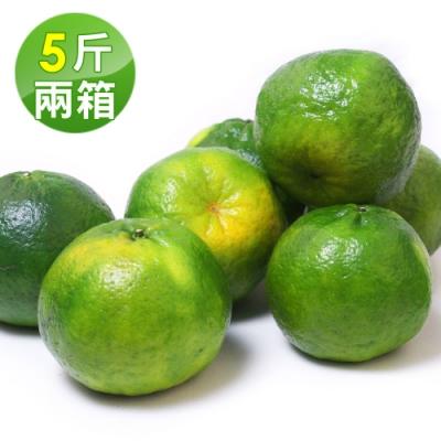 愛上水果 台灣青皮椪柑*2箱(25A/5斤/約15顆/箱)