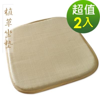 范登伯格 - 植草雙面單人坐墊 二入組 (50x50cm)