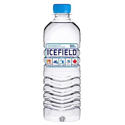 加拿大ICEFIELD 天然冰河水(500mlx24入)