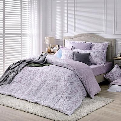 BBL Premium 蜜香暖境100%精梳棉.印花加大兩用被四件式床包組