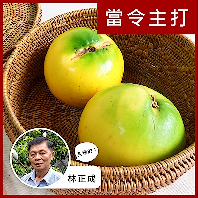 【果物配】黃金果.友善農法(3kg/8顆入)