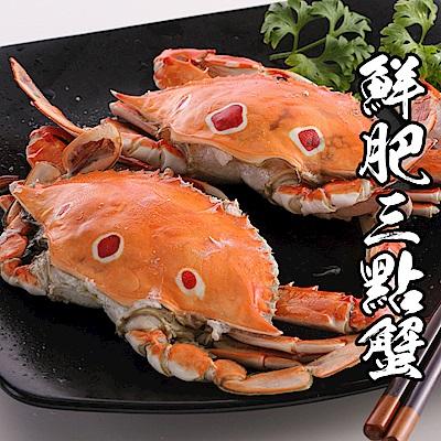 【買6送6《共12隻》】海鮮王鮮肥三點蟹 6隻組(淨重100-150g/隻)