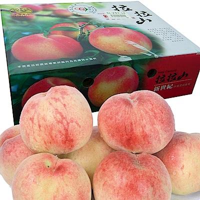 桃園復興鄉 拉拉山水蜜桃禮盒/5粒裝◆3盒特惠價!!