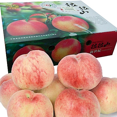 桃園復興鄉 拉拉山水蜜桃禮盒/6粒裝◆3盒特惠價!!