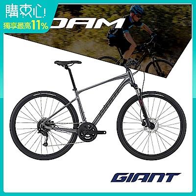 Giant ROAM 2 DISC 城市運動自行車